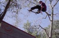 CJ Collins - Transworld Skateboarding 'Checking In'
