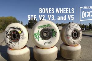 CCS - STF Wear Test