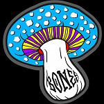 """BONES WHEELS Portal 3"""" Sticker 20 pack"""