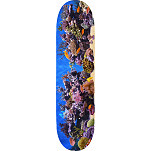 "MINI LOGO FISH TANK ""18"" SKATEBOARD DECK 244 K20 8.5 X 32.08"