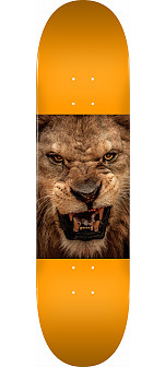 "MINI LOGO CHEVRON ANIMAL ""14"" SKATEBOARD DECK 244 LION - 8.5 x 32.08"