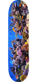 "MINI LOGO FISH TANK ""18"" SKATEBOARD DECK 242 K20 8.0 X 31.45"
